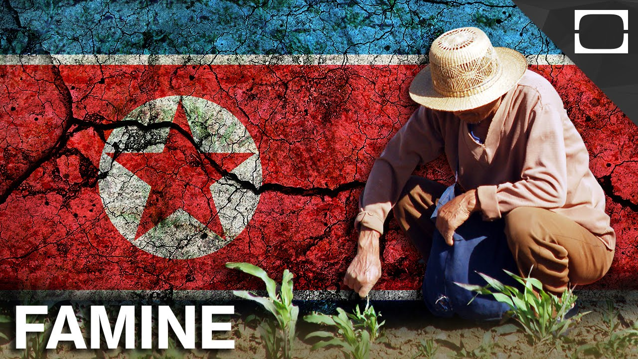 Is The North Korean Government To Blame For Starving Citizens? thumbnail
