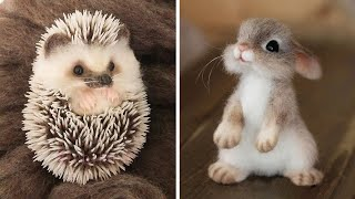 Cute baby animals Videos Compilation cutest moment of the animals - Soo Cute! #12