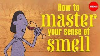 تحميل اغاني How to master your sense of smell - Alexandra Horowitz MP3