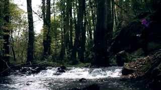 Video Nanosféra - V Čechách [OFFICIAL VIDEO]
