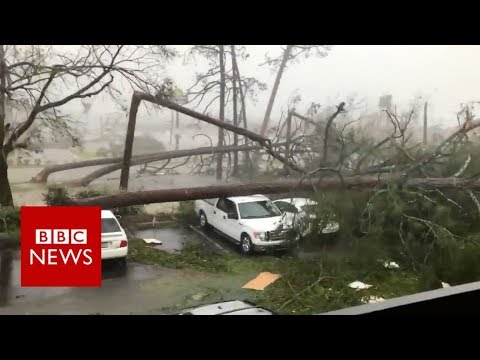 Hurricane Michael: Videos show destruction in US - BBC News