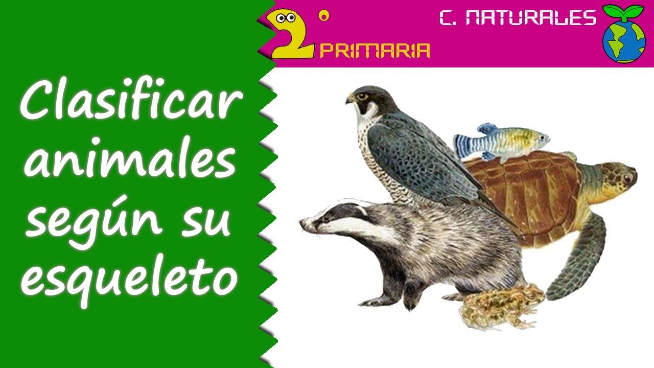 Ciencias de la Naturaleza. 2º Primaria. Tema 4. Clasificamos los animales según su esqueleto