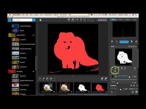 Download Topaz Studio Top Tips - Using the AI ReMix Adjustment in