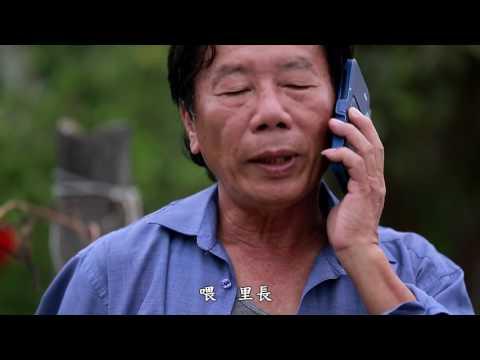 七股區樹林社區《我是樹子腳人》