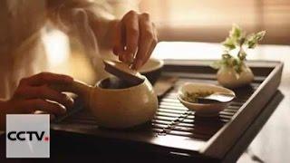 Документальные фильмы: История чая Часть 2