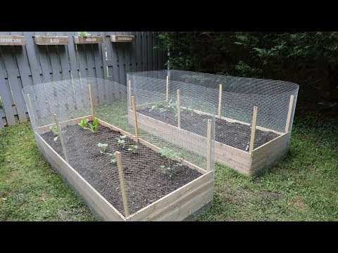 How to Build Raised Garden Beds DIY – Thrift Diving
