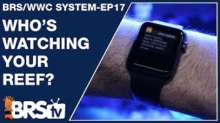 To monitor or not to monitor your reef? Will it save your tank? - The BRS/WWC System EP17 - BRStv