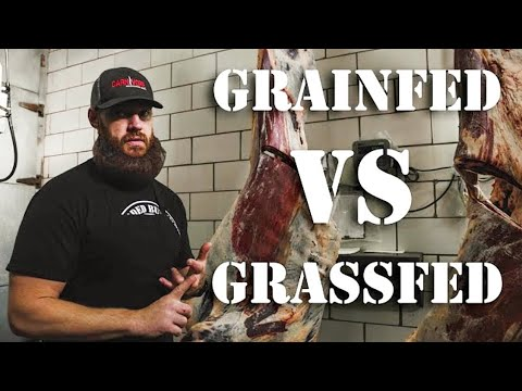 Grass Fed Beef vs Grain Fed Beef (What's the Difference) | The Bearded Butchers