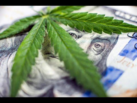 Minimum Wage RAISED, Weed LEGALIZED With Direct Democracy