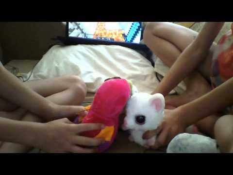 Видео с веб-камеры. Дата: 13 августа 2014 г., 13:35.