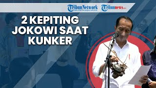 Penampakan 2 Kepiting yang Didapat Jokowi saat Kunker ke Cilacap Tinjau Vaksinasi dan Tanam Mangrove