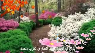 تحميل اغاني زيدان ابراهيم - امير العذارى _ تغريد محمد MP3
