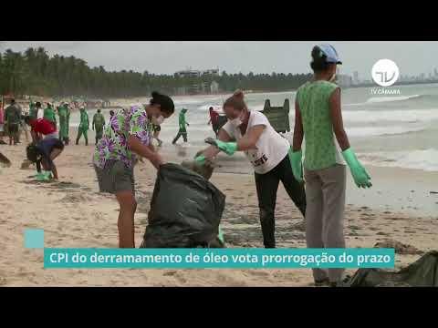 CPI do derramamento de óleo vota prorrogação do prazo - 24/03/21