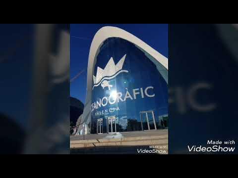 Oceanógrafo de Valencia, España. En el túnel de los tiburones