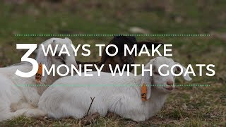 3 Ways to Make Money with Goats
