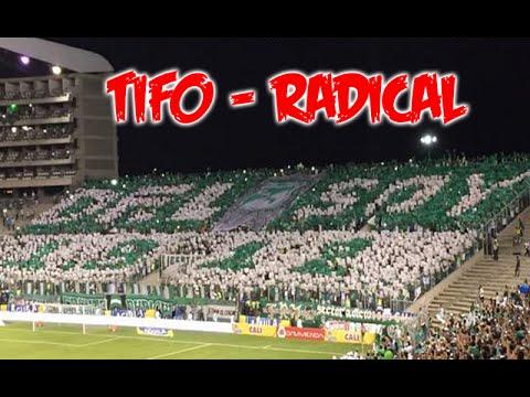 """Frente Radical Verdiblanco | TIFO | Deportivo Cali vs Atletico nacional 1-0 2015"" Barra: Frente Radical Verdiblanco • Club: Deportivo Cali"
