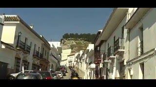 preview picture of video 'Sportster.cc Cerdos Ibericos en Espera (Cadiz)'