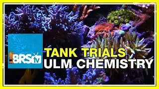 Reliable & Low Maintenance Dosing Options - BRStv Tank Trials Ep14