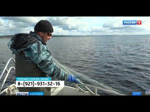 Рыболовные сети теперь необходимо регистрировать