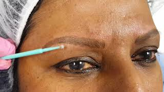 Asian Eyebrows Microblading Mature Skin @ Perfect Definition by El Truchan