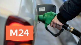 В Счетной палате предупредили о резком росте цен на бензин в 2019 году - Москва 24