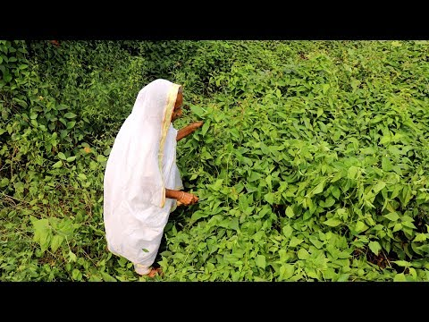 Traditional Food- Vadla Patar Bora Recipe by our Grandmother at Home | Unknown Village food Recipes