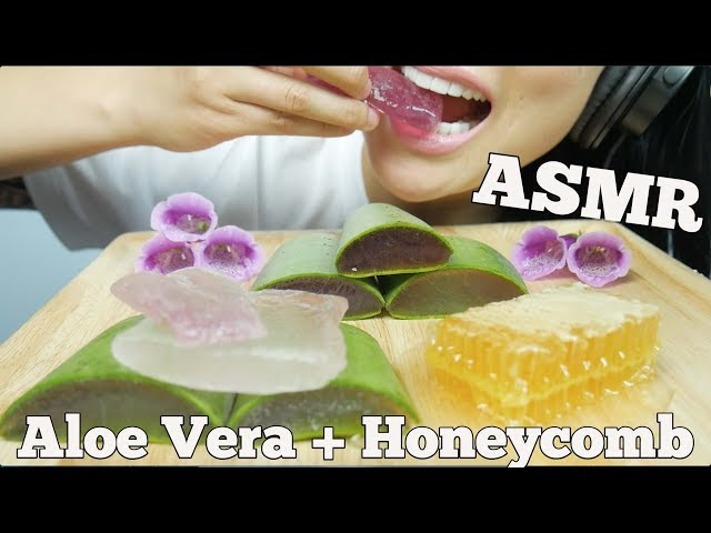Asmr Aloe Vera Honeycomb Crunchy Soft Sticky Slimy Extreme Eating Sounds Sas Asmr Part 2 Vtomb Check out the aloe challenge play list from other artist. amp vtomb com