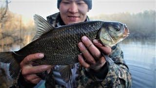 Рыбалка на перемет. Первый выезд. Сом, щука, огромный голавль.Рыбалка с ночевкой.