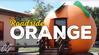 BIG ORANGE is a slice of Florida roadside history   ChadGallivanter