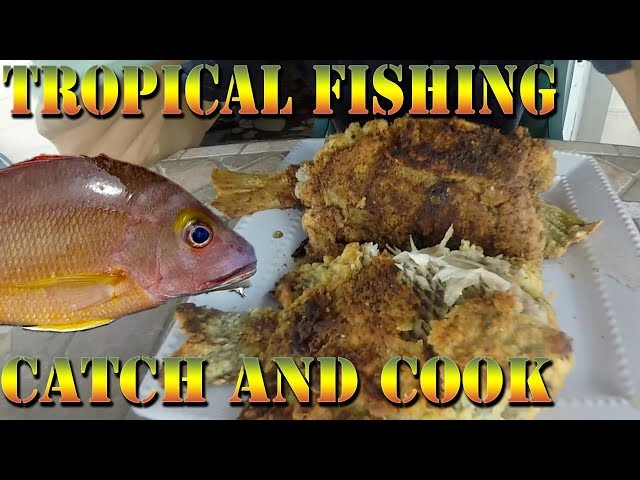 Tropical Shore Fishing Catch and Cook - Po'apa'a Point - Fishing With Subscribers B.O.D.S. 34