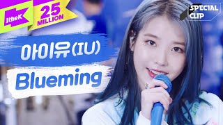 IU(아이유) 'Blueming(블루밍)' 라이브🎤🎤(밴드ver.) | 가사 | 스페셜클립 | Special Clip | LYRICS [4K]