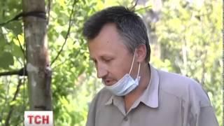 Мешканці Миколаївки розповідають про зачистку міста літаком