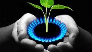 Биогаз каждому в дом.