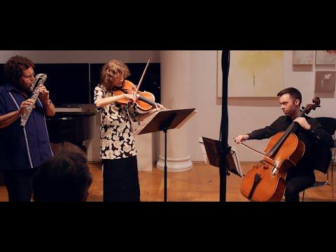 Borey Shin: Trio for Bass Flute, Viola and Cello (2014)
