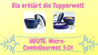 Micro-CombiGourmet 3,0l