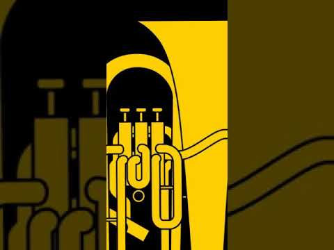 ユーフォニアムのレッスンをします 基礎練習、吹奏楽曲など個人にあわせてのレッスン! イメージ1