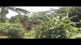 preview picture of video 'king fisher lodge in Jinja'