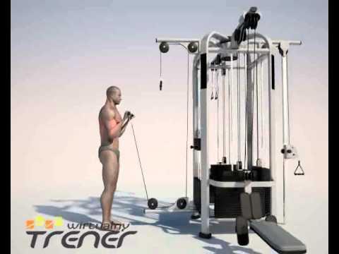 Jak zbudować ćwiczenia mięśni