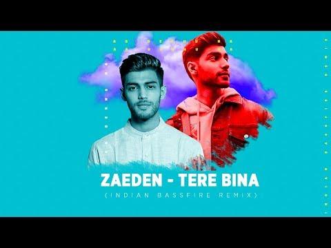 Zaeden - Tere Bina ft. Amyra Dastur (Indian BassFire Remix)   VYRLOriginals