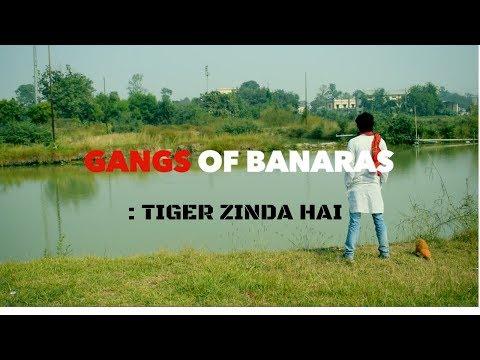Gangs of banaras:tiger zinda hai