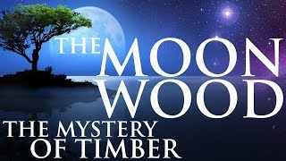 THE MOON WOOD – HIDDEN KNOWLEDGE OF TIMBER