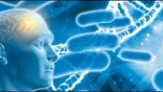 Активизация слоёв ДНК. Упражнения 1-4