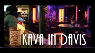 A Day in Davis : Kava Bar