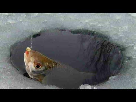 Как ловить рыбу зимой на большой глубине с Power Bank и дешевой удочкой
