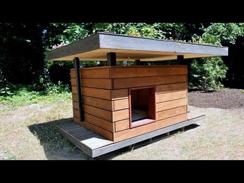 Dog House Ideas For Winter