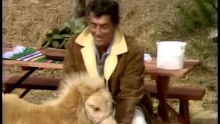 Dean Martin - Gentle On My Mind (animals)