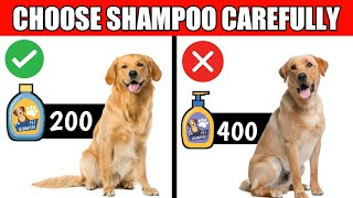 Choose a Right Shampoo For Dog / Which is the Best and Safest Dog Shampoo 🔥