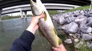 Ловля форели. Рыбалка в горных реках. Отчет часть 3. Bow River Fishing