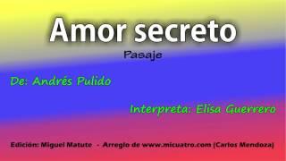 Amor secreto   -   Elisa Guerrero