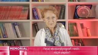 Fetal Ekokardiyografi Nedir, Niçin Yapılır?